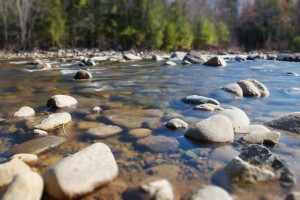 summer-rocks-trees-river
